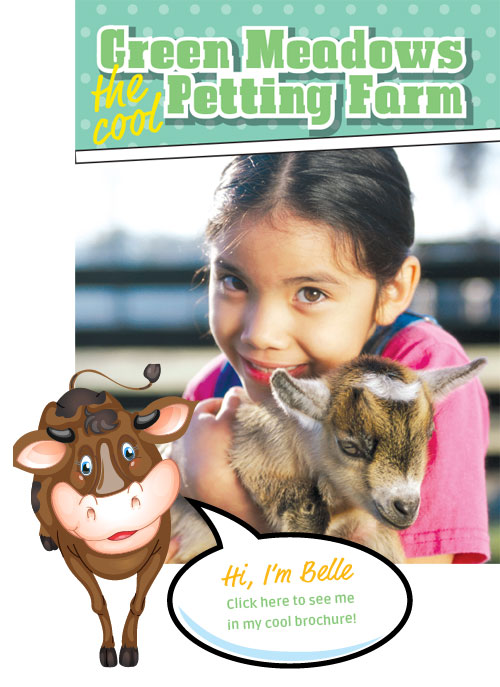 view green meadows petting farm brochure online or download